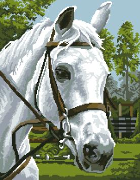 гоблен: Бялото конче
